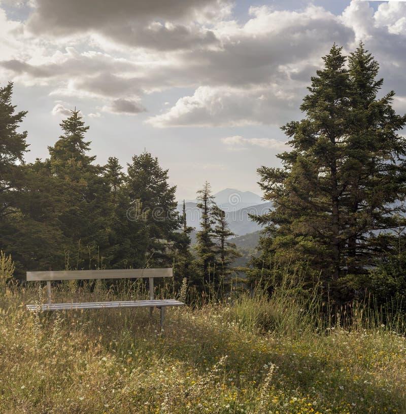 O abeto e o banco na região Tzoumerka das montanhas, Grécia, montanhas Pindos fotos de stock