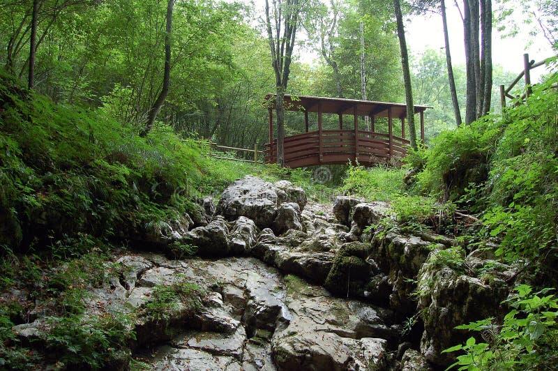 O abismo do diabo, ponte de madeira - Basovizza - Trieste - Itália imagem de stock royalty free