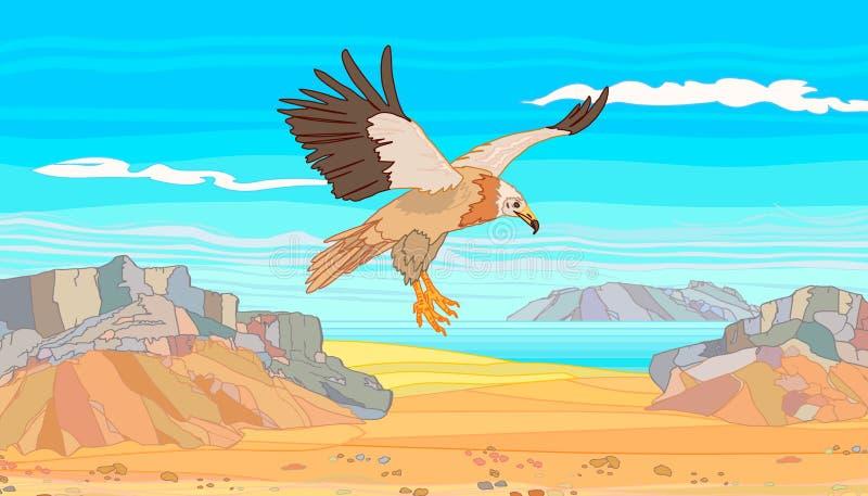 O abutre do Socotra da ilha nas montanhas de pedra ilustração royalty free