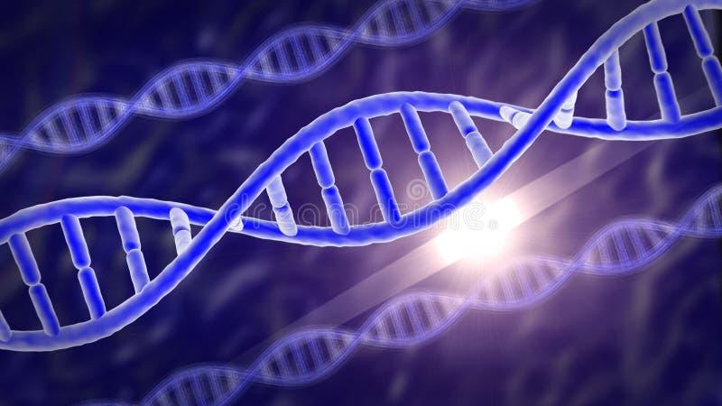 O ADN humano dos genes ilustração do vetor