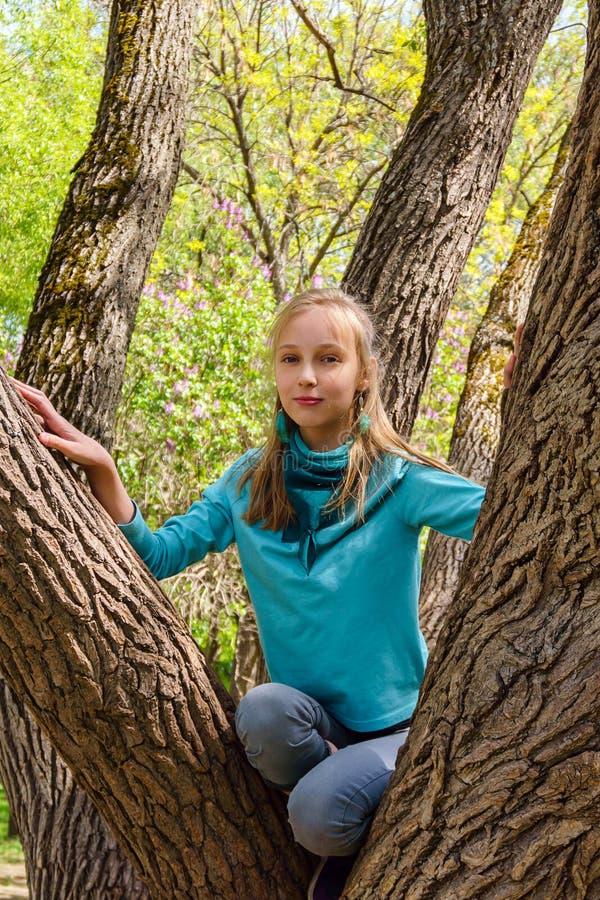 O adolescente de sorriso escalou uma árvore no parque imagem de stock