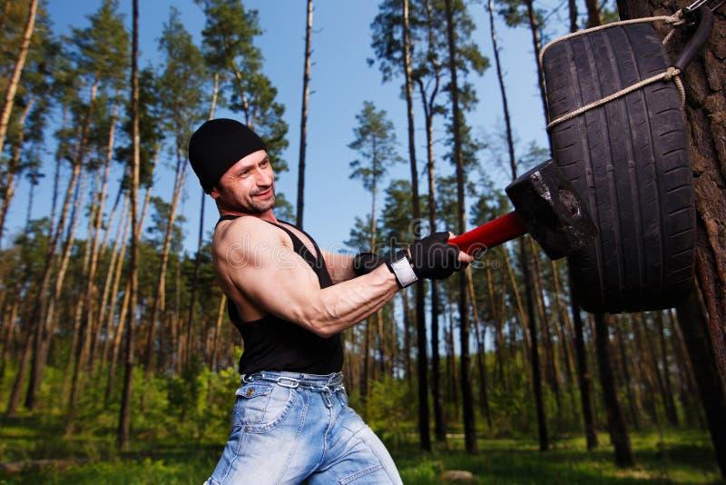 O adulto saudável forte rasgou o homem com os músculos grandes que batem o tyr do carro fotografia de stock