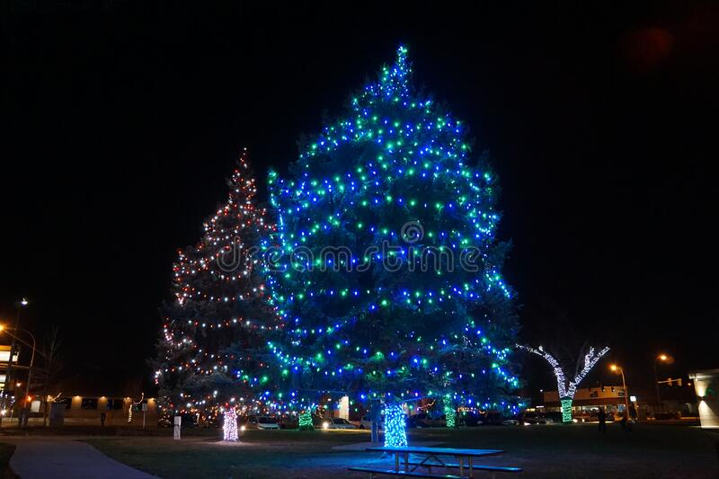 O Albero natalizio: Sapphire Beauty Hapo Credit Union Christmas Lights fotografia stock