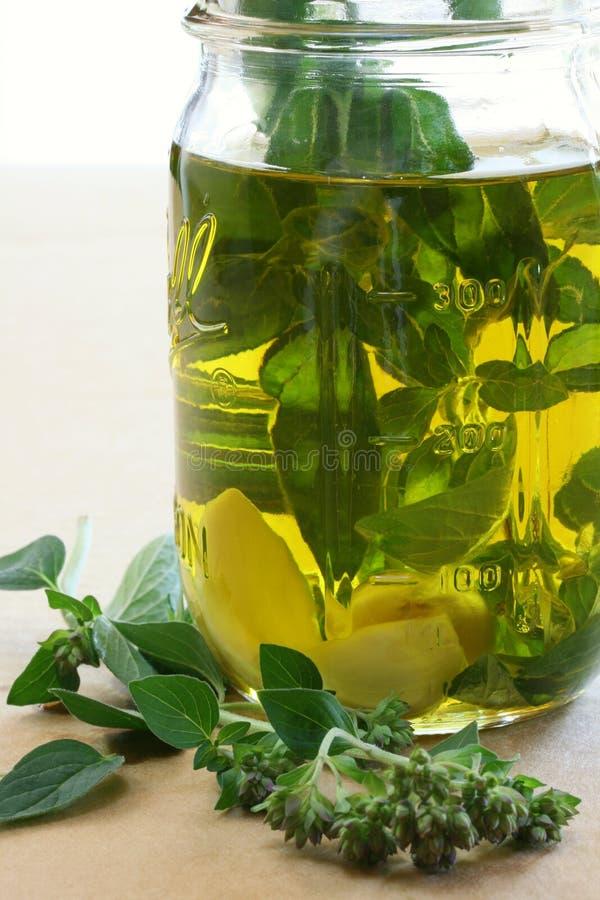 O alho e a erva infundiram o petróleo verde-oliva fotografia de stock