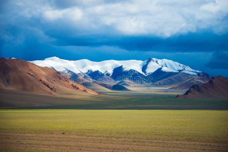O Ali tibetano no sonho fotografia de stock royalty free