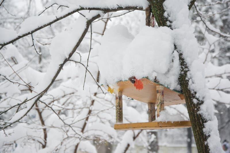 O alimentador de madeira cobriu a neve na floresta do inverno imagens de stock