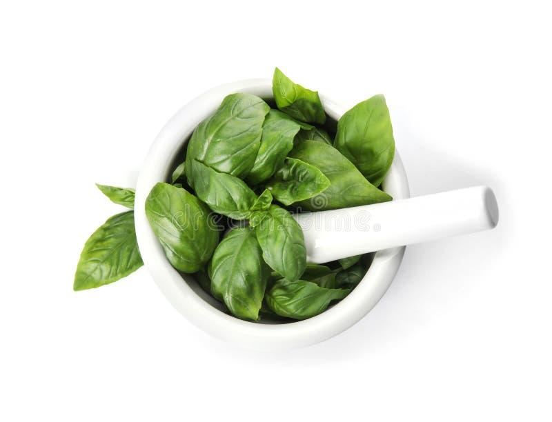 O almofariz com manjericão verde fresca sae no fundo branco imagem de stock
