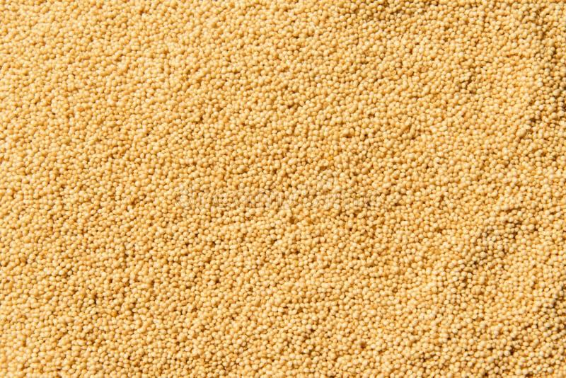 O amaranto, amaranto semeia o fundo saudável do alimento, papel de parede imagens de stock royalty free