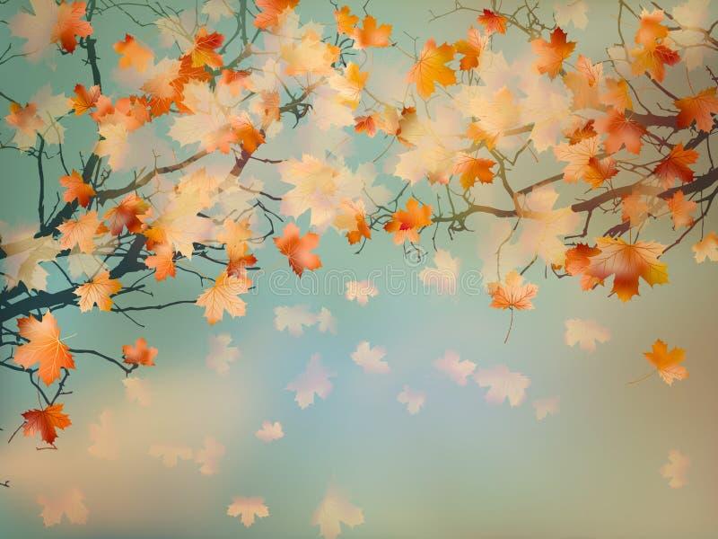 O amarelo abstrato do outono deixa o fundo. EPS 10 ilustração stock