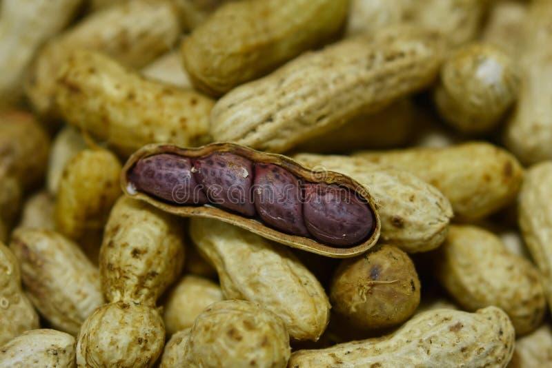 O amendoim fervido imagem de stock royalty free