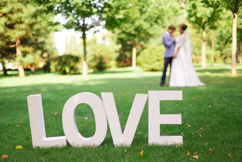 O amor da palavra em letras brancas grandes na grama verde no parque com um fundo obscuro fotografia de stock royalty free