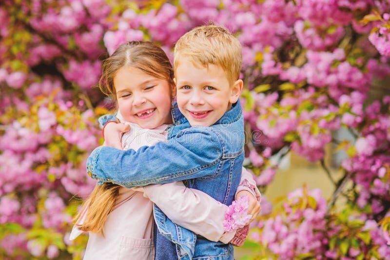 O amor est? no ar Crian?as na flor de cerejeira cor-de-rosa do amor Beb?s rom?nticos As crian?as dos pares andam o jardim da ?rvo fotografia de stock