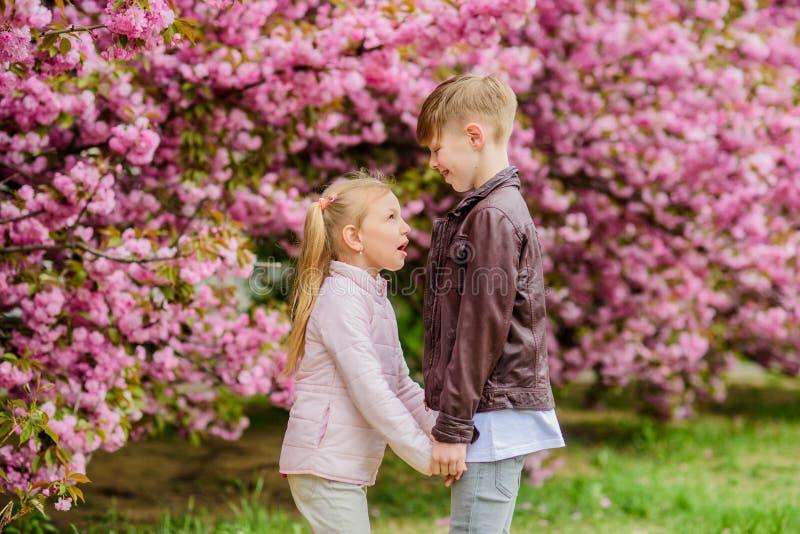 O amor est? no ar Sentimentos macios do amor Mi?dos felizes Data rom?ntica no parque Tempo de mola cair no amor Mi?dos imagens de stock