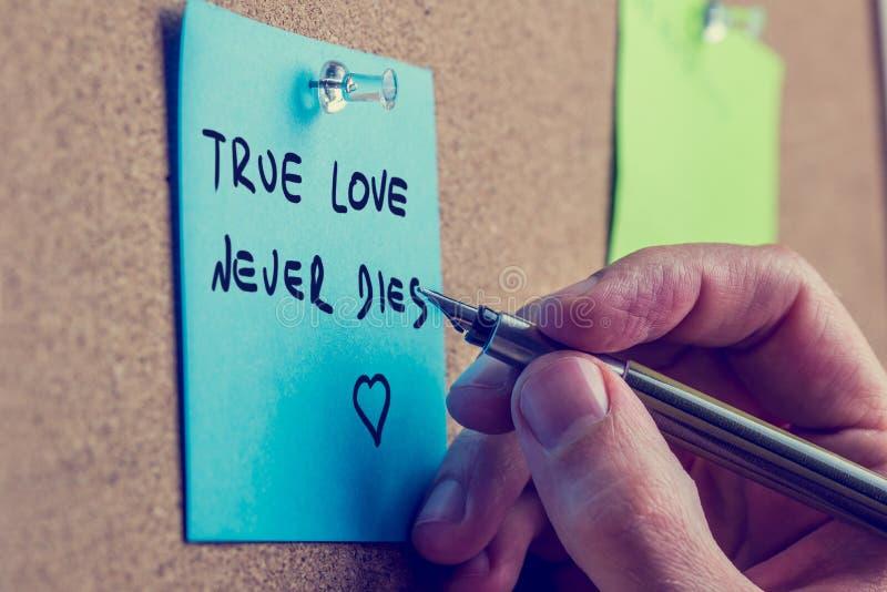 O amor verdadeiro nunca morre imagens de stock royalty free
