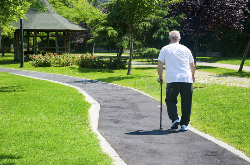 O ancião que anda no parque com um bastão fotografia de stock