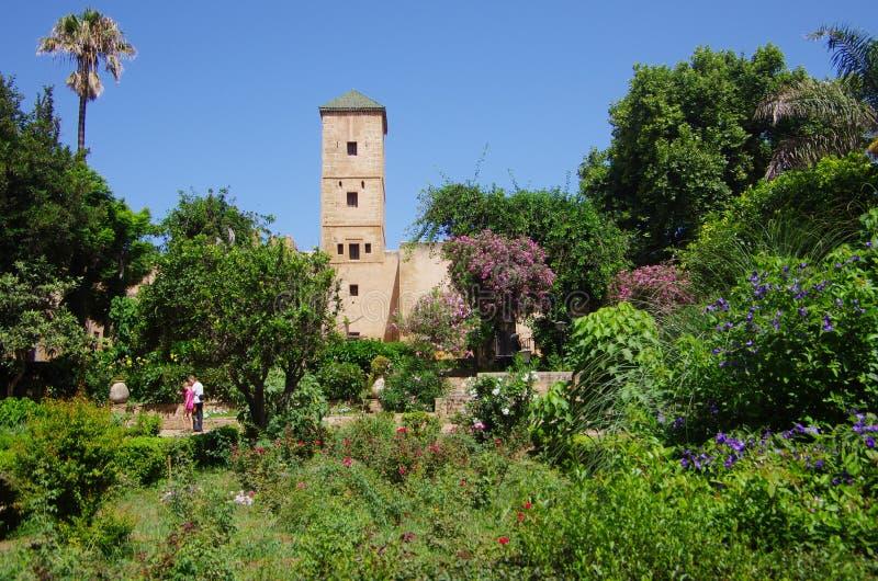 O andalusian jardina no medina velho de Rabat fotografia de stock royalty free