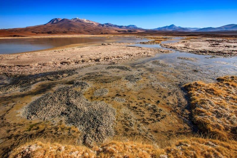 O anfiteatro ? forma??o geological bonita de vale da lua no deserto de Atacama, o Chile fotografia de stock royalty free