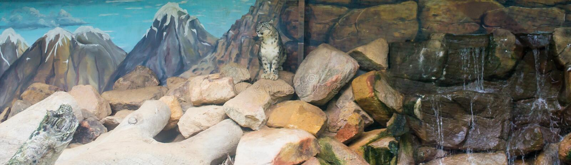 O antro dos leopardos fotos de stock