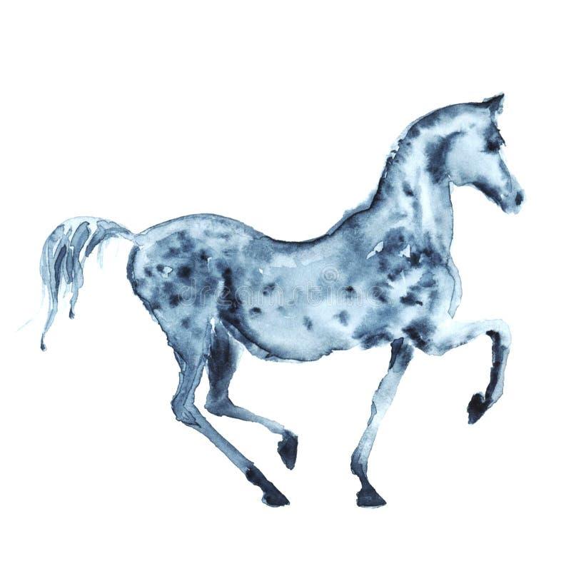 O arabian da aquarela dapple o cavalo cinzento ilustração do vetor