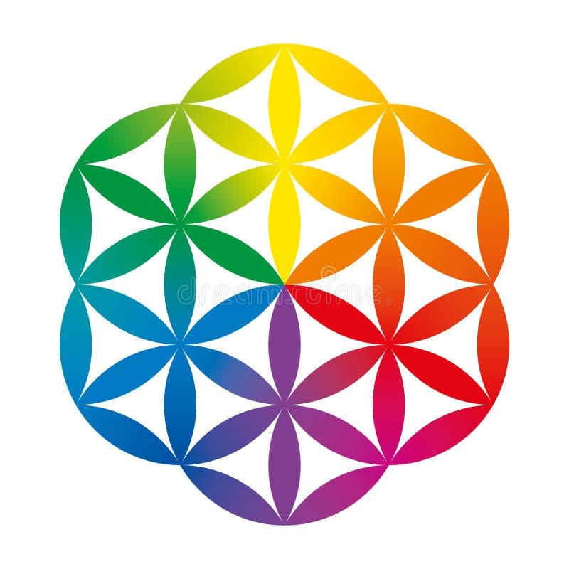 O arco-íris coloriu a metade de uma flor da vida ilustração do vetor
