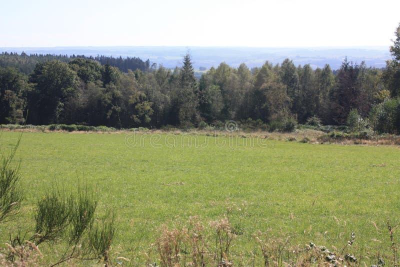 Download O Ardenne No Lugar La Roche Em Bélgica Imagem de Stock - Imagem de montes, home: 80100943