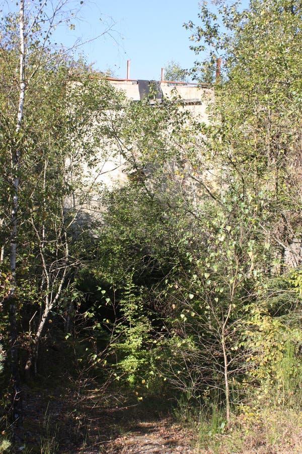 Download O Ardenne No Lugar La Roche Em Bélgica Imagem de Stock - Imagem de jardim, holandês: 80101825