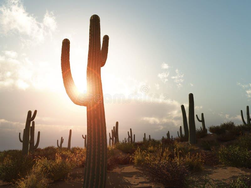 O Arizona fotos de stock