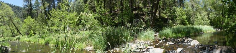 O Arizona, opinião do parque da rocha da corrediça, do A da angra do carvalho que correm através de árvores, grama e rochas foto de stock royalty free