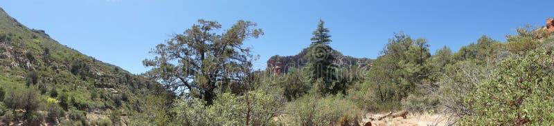 O Arizona, parque da rocha da corrediça, opinião de A da garganta da angra do carvalho da rocha da corrediça imagens de stock