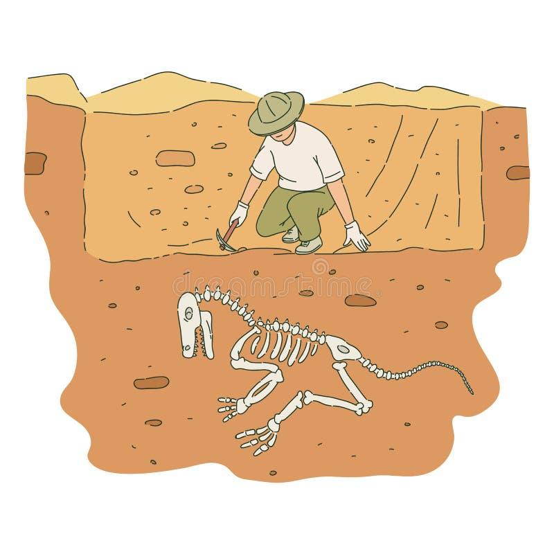 O arqueólogo masculino com picareta escava para fora o estilo de esqueleto do esboço do dinossauro ilustração stock