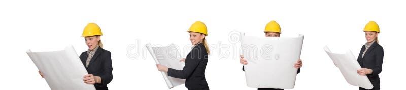 O arquiteto novo isolado no branco imagens de stock royalty free