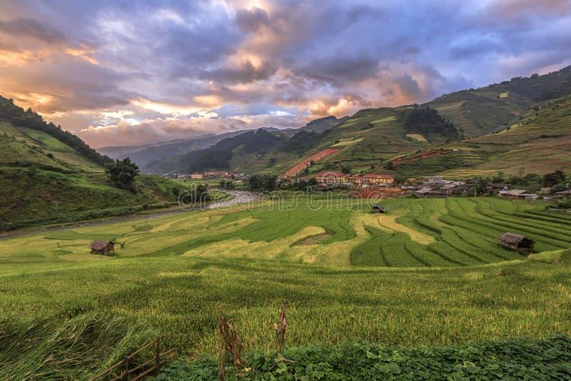 O arroz coloca em terraced no por do sol, MU Cang Chai, YenBai, Vietname imagens de stock royalty free