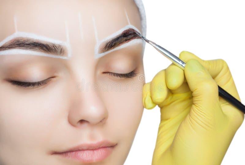 O artista de composição aplica uma tintura da sobrancelha das pinturas nas sobrancelhas de uma moça fotos de stock
