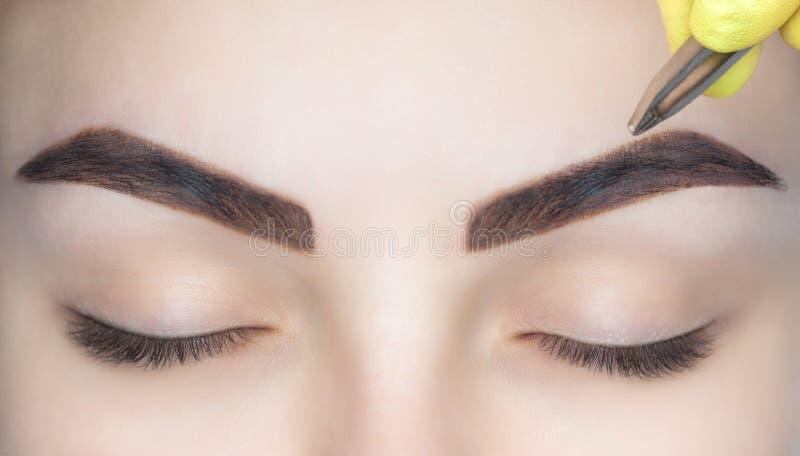 O artista de composição arranca suas sobrancelhas de uma jovem mulher em um salão de beleza imagens de stock royalty free