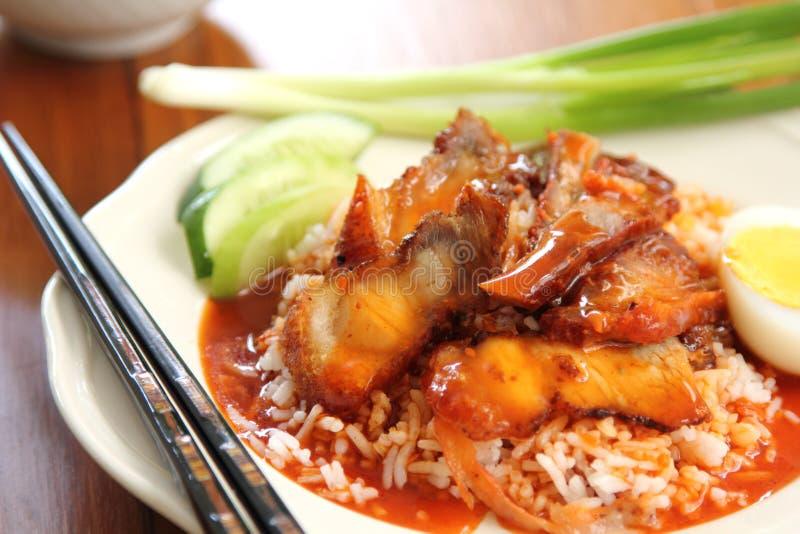 O assado e a carne de porco friável com molho sauce no arroz imagens de stock