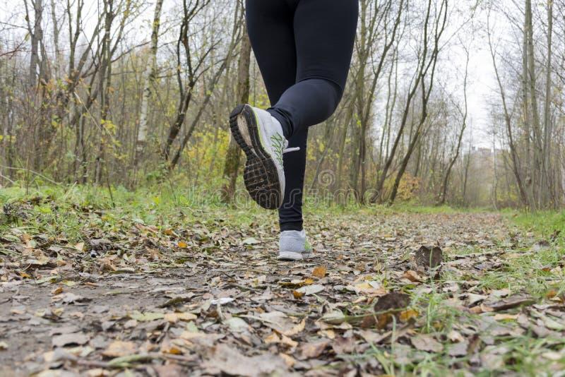 O atleta da menina, mulher que corre nas sapatilhas na trilha no imagens de stock