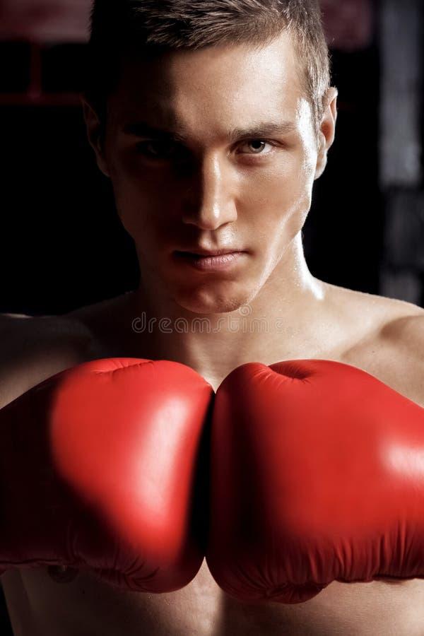 O atleta masculino alegre está pronto para lutar foto de stock royalty free