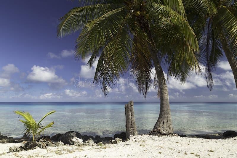 O atol e a lagoa de Rangiroa perto do tiputa passam - Polinésia francesa foto de stock royalty free