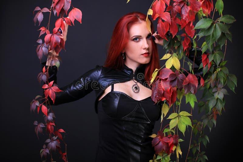 O azul Eyed a menina gótico principal vermelha entre videiras coloridas do outono fotos de stock royalty free