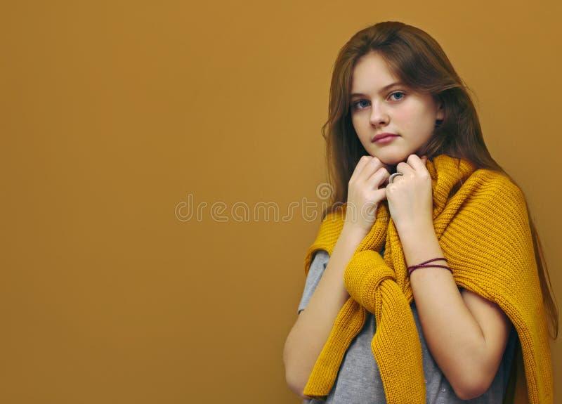 O azul eyed a menina tímida de cabelo marrom com cabelo de fluxo em uma camiseta em um marrom imagem de stock