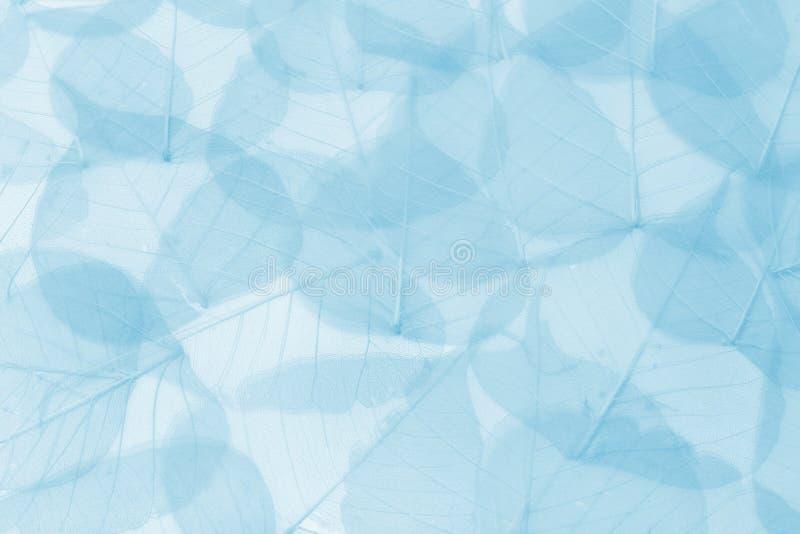 O azul sae do fundo ilustração do vetor