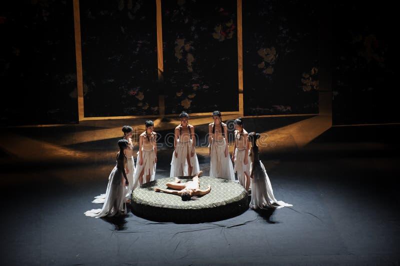 O bailado compressão-moderno tradicional: Trollius chinensis foto de stock royalty free