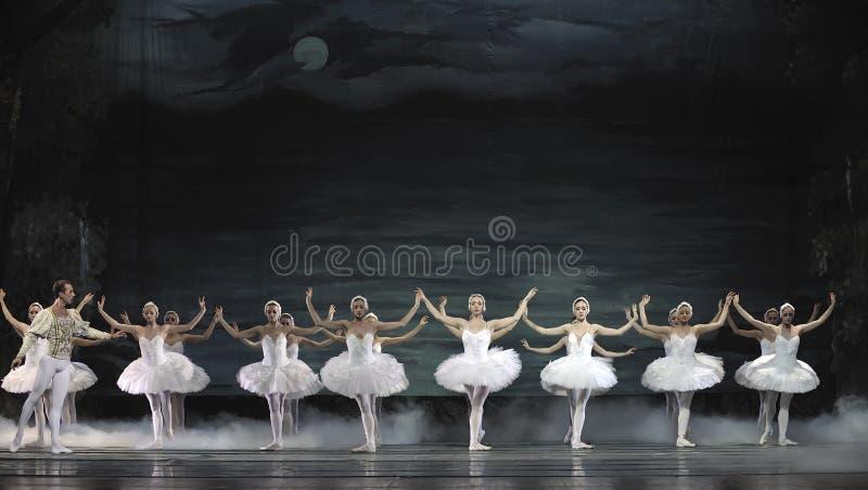 O bailado do lago swan executou pelo bailado real russian imagens de stock