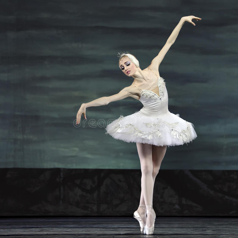 O bailado do lago swan executou pelo bailado real russian imagem de stock royalty free