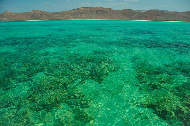 O Baja California e seu mar de Cortez são um paraíso para snorkelers e mergulhadores mas igualmente para o tráfico de droga dos c fotos de stock royalty free