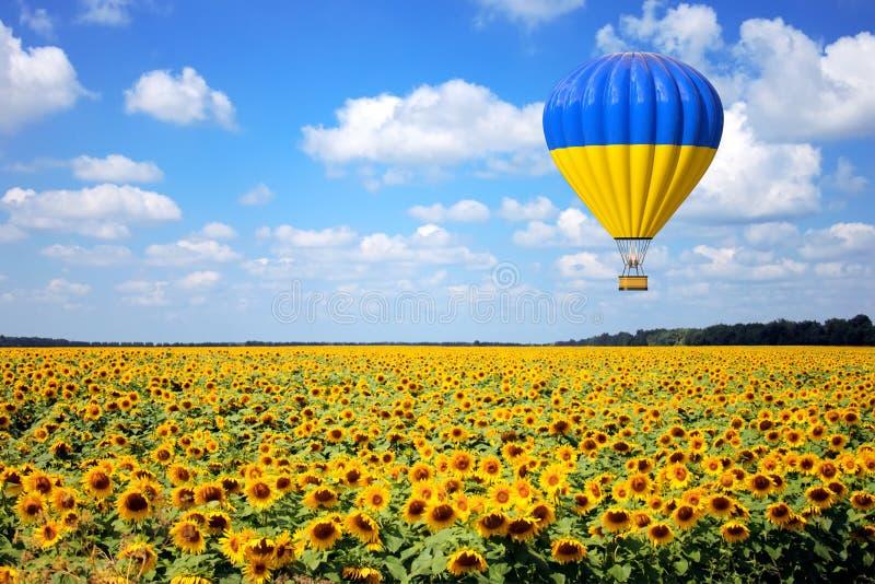 O balão de ar quente com a bandeira da mosca de Ucrânia sobre girassóis coloca rendição 3d imagens de stock royalty free