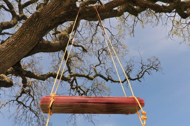 O balanço vermelho da árvore pendura de uma grande filial do carvalho imagem de stock royalty free
