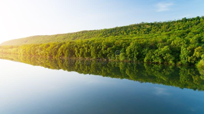 O banco do rio com floresta grossa refletiu na água fotos de stock royalty free
