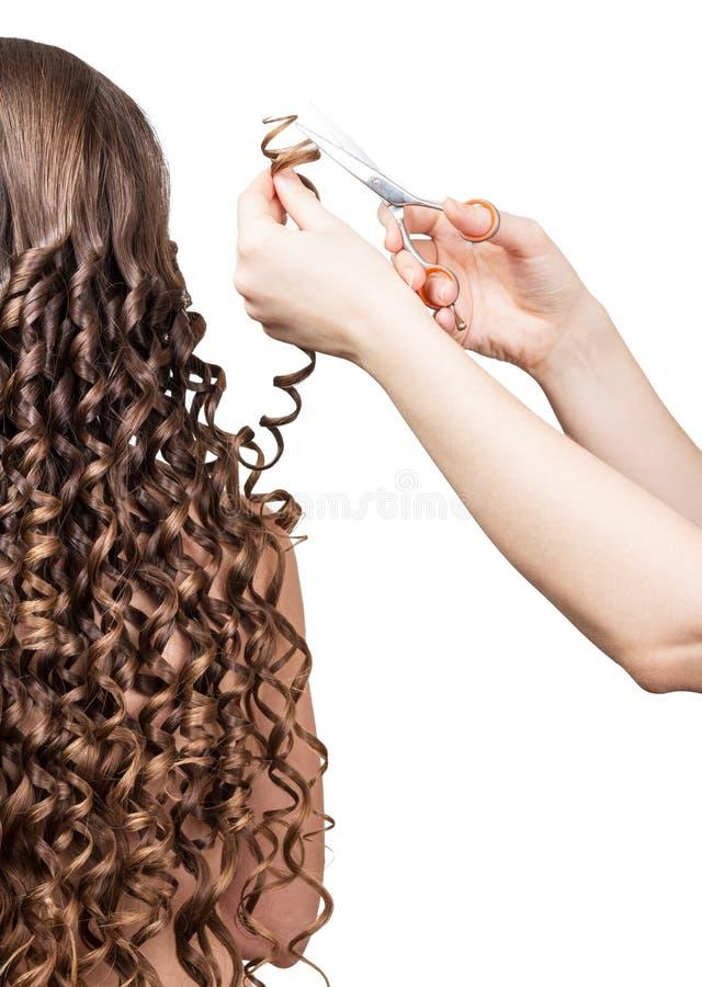 O barbeiro apara a menina dos cachos com o cabelo encaracolado longo isolado no branco imagem de stock