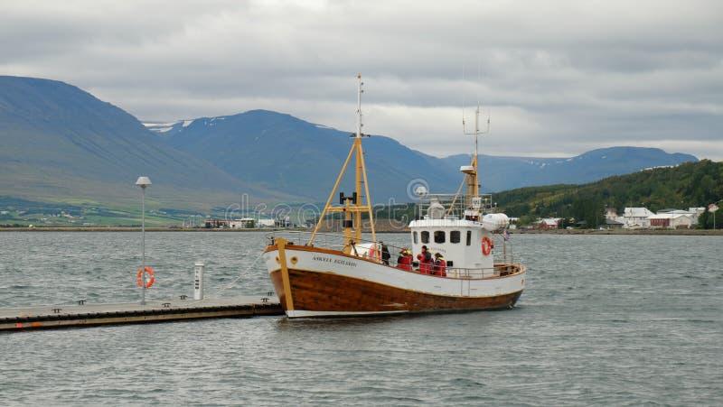 O barco Askell Egilsson preparou-se para a observação da baleia fotos de stock royalty free